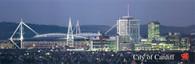 Millennium Stadium (200)