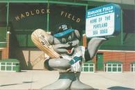 Hadlock Field (Sea Dogs Issue No# 4)