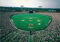 Seibu Lions Stadium (855)