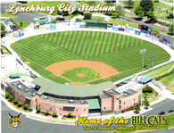 Lynchburg City Stadium (No# Hillcats Issue)