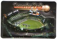 Comerica Park (D0123, K45231)
