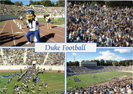 Wallace Wade Stadium (DUKE-33, L-11673-E)