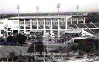 George M. Steinbrenner Field (RA-Tampa)