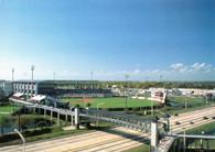 George M. Steinbrenner Field (No# Legends Field 1)