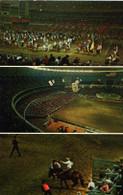 Astrodome (35, 514894)