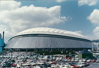 Tokyo Dome (Big Egg Issue 3 of 10)
