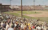 Phoenix Municipal Stadium (PX101)