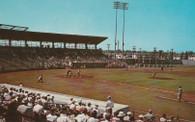 Jack Russell Stadium (CK.26, 6C-K1002 no border)