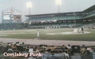 Comiskey Park (Comiskey-Schneider)