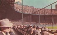 Briggs Stadium (P1174, D19)