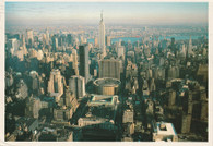 Madison Square Garden (1351)