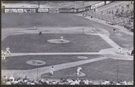Bears Stadium (2021-04)