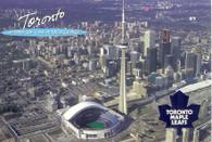 Skydome (NHL-TML-502)