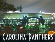 Bank of America Stadium (zazzle-Carolina)
