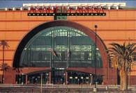 Anaheim Arena (OC236)
