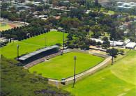 Danie Craven Stadium (WSPE-159)