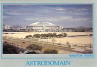 Astrodome (73484083)