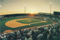 Joseph P. Riley Jr. Park (Charleston RiverDogs Issue)