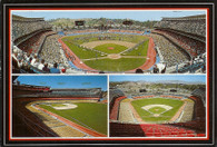 Dodger Stadium (MK-165 black)