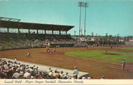 Jack Russell Stadium (CK.26, 6C-K1002)