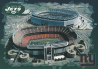 Giants Stadium & MetLife Stadium (No# AC Photo)