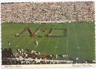Notre Dame Stadium (73264)