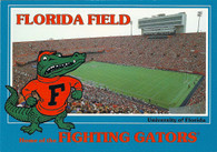 Ben Hill Griffin Stadium at Florida Field (J13453)