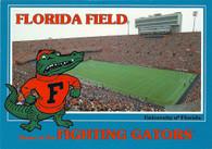 Ben Hill Griffin Stadium at Florida Field (J13453)