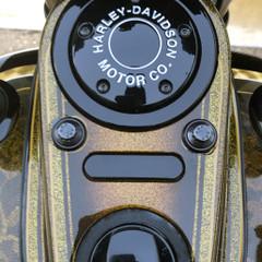 Dash Indicator Block-off Plate