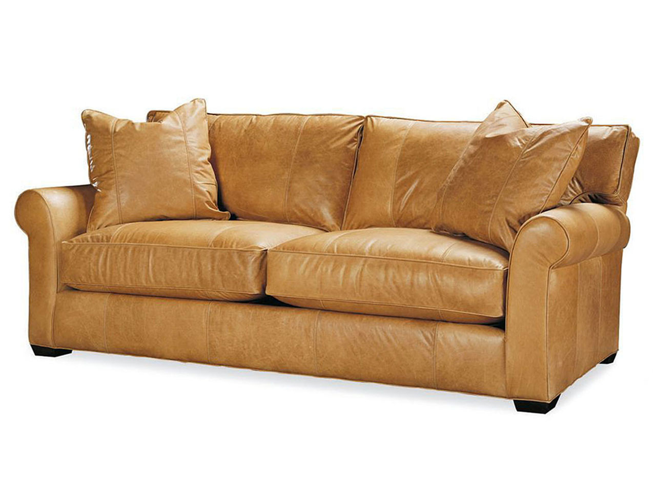 - Jessie Leather Queen Sleeper Leather Sleeper Sofas & Sofa Beds