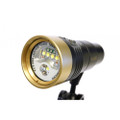 Fit Pro 2600G Flare video light (Wide,spot,UV,red) (Gold)