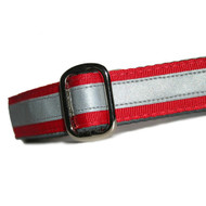 Reflective Dog Collar in Cherry