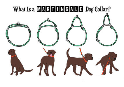 what is a martingale