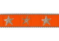 Starfish Collar and Leash in Orange
