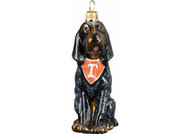 Tennessee Blue Tick Hound Glass Christmas