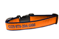 "Personalized Dog Collar by Preston: 1 1/4"" Wide"