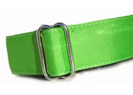 Martingale Dog Collar in Lime Green Grosgrain Ribbon