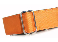 Martingale Dog Collar in Ginger Orange Grosgrain Ribbon