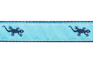 Gecko Dog Collar and Leash (Navy on Teal)