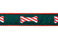 Candy Cane Dog Collar & Leash