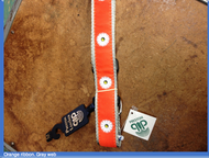 Daisy Dog Collar & Leash