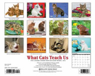What Cats Teach Us Calendar 2015
