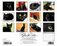 Just Black Cats Calendar 2015
