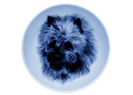 Cairn Terrier Face Danish Blue Plate