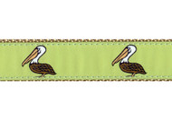 Pelican Dog Collar and Leash