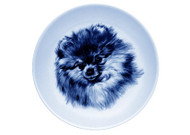 Pomeranian Face Danish Blue Dog Plate
