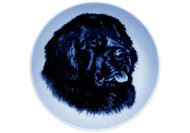 Newfoundland Face Danish Blue Dog Plate (# 2)