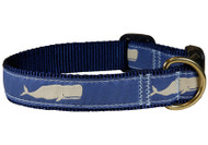 Whale Dog Collar on Blue