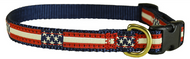 Retro Flags Dog Collar and Leash