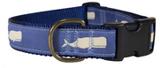 Whale Dog Collar and Leash